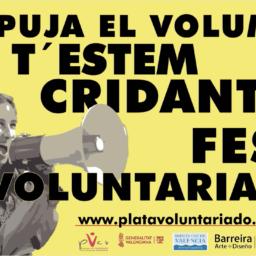 Haz voluntariado - platavoluntariado